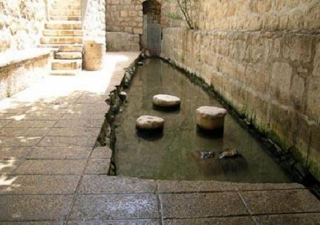 pool of shiloam excavation report